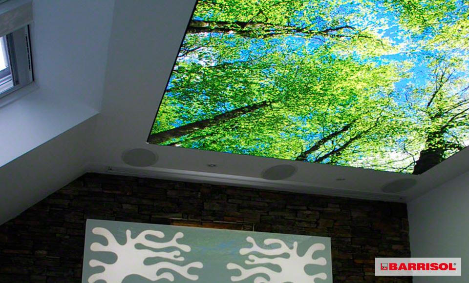 plafond imprimé luineux